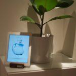 Renoveringstorka blev iPad-ställ i trä