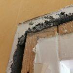Dagen efter rivningen av väggen